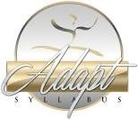 Adapt Syllabus logo